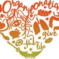 Organdonationsdag 2020
