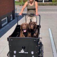 Med en el-ladcykel kan Betina og hundene komme langt omkring
